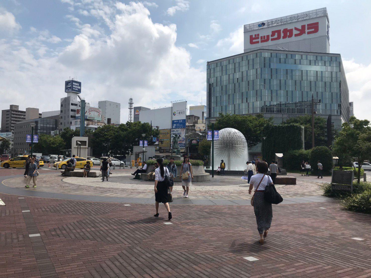 ビックカメラ沿いに桃太郎大通りを進んでいきます。
